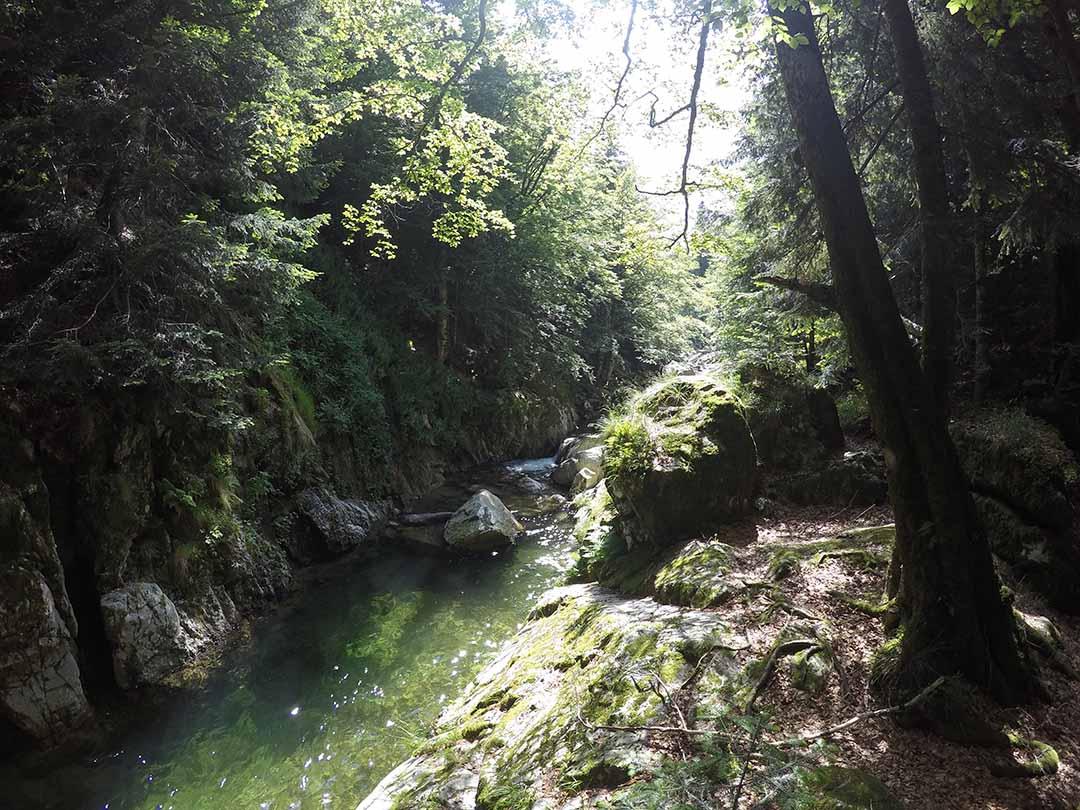 canyon de la borne en ardèche